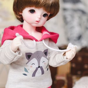 USD Cute Raccoon Hooded T - Pink